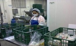 Producto pulpas final Agrocom