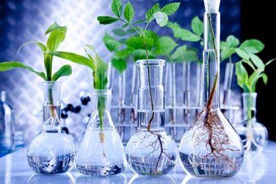 biotecnologia agrocom.co