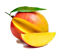 Mango Agrocom.co