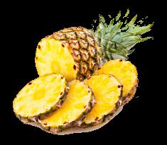 piña Agrocom